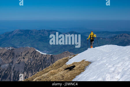 Hiker descending on the snow from Rossstock (2461m). In the background alpine foothills and flat Swiss plateau ('Mittelland'). - Stock Image