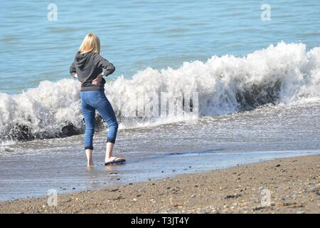 Aberystwyth, UK. 10th Apr, 2019. People enjoying a gloriously sunny and warm April springtime afternoon with clear cloudless blue skies and temperatures in the low 50's Fahrenheit in Aberystwyth Credit: keith morris/Alamy Live News - Stock Image