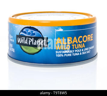 Winneconne, WI - 11 May 2019 : A can of wild planet albacore wild tuna on an isolated background - Stock Image