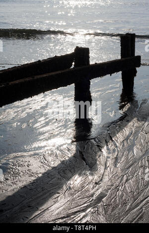 Abstract of wooden groyne at low tide with the sun's reflection in the sea - Stock Image