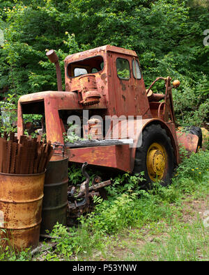 An old orange loader abandoned in the forest Adirondack Mountains, NY USA - Stock Image