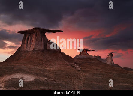Stone Wings, bizarre rock formations in Bisti Badlands, New Mexico, USA - Stock Image