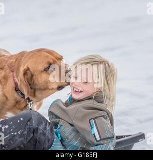 Pet dog licking boy's ear in snow - Stock Image