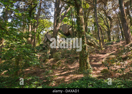 Sintra Gardens, Pena sculptural rock formations in the woodland hillside. - Stock Image