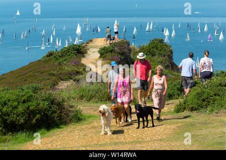 Walk the Wight,Dog,walkers,The Needles, Alum Bay, Headon Warren, spectators, Round the Island Race, yacht,Cowes, Isle of Wight,England, - Stock Image