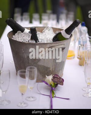 Ice buck and glasses with fizz - Stock Image