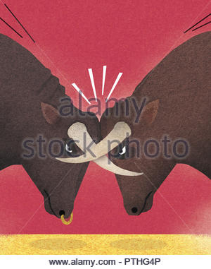 Two bulls with horns locked in conflict - Stock Image