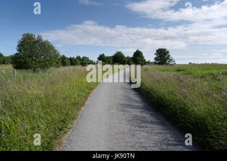 Road through the landscape on Manija island. Manilaid Estonia 9th July 2017 - Stock Image