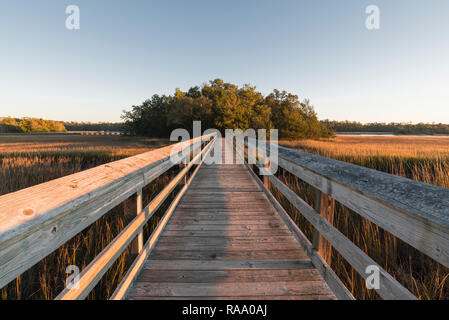 Boardwalk through coastal marsh to an island of trees, Little River, South Carolina, United States - Stock Image