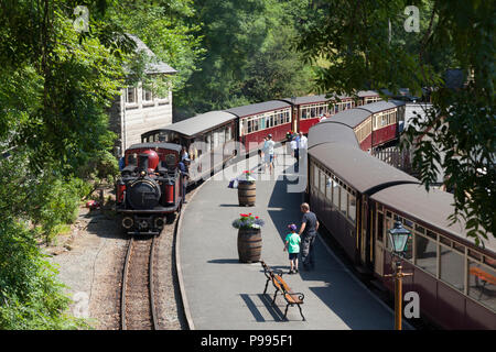 Train arriving at station on the Ffestiniog Railway, Tan-y-Bwlch, Gwynedd, Wales - Stock Image
