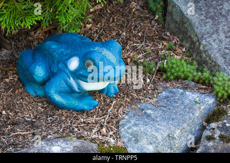 Close-up of an ornamental frog in a landscaped residential backyard garden in summer - Stock Image