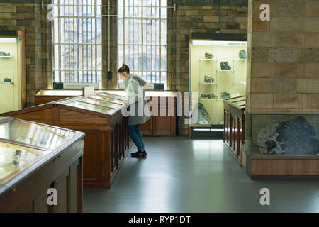 A woman looking at a display of minerals in the Natural History Museum, London. UK - Stock Image