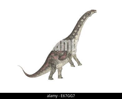Dinosaurier Diamantinasaurus / dinosaur Diamantinasaurus - Stock Image
