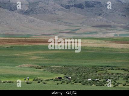 Rural Iran. Chaharmahal and Bakhtiari province, Iran - Stock Image