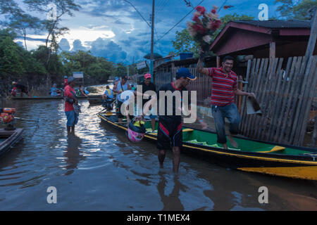 2015 flooding in Brazilian Amazon, normal daily life, man transports flower in canoe at Taquari district, Rio Branco city, Acre State. Floods have been affecting thousands of people in the state of Acre, northern Brazil, since 23 February 2015, when some of the state's rivers, in particular the Acre river, overflowed. Further heavy rainfall has forced river levels higher still, and on 03 March 2015 Brazil's federal government declared a state of emergency in Acre State, where current flood situation has been described as the worst in 132 years - Stock Image