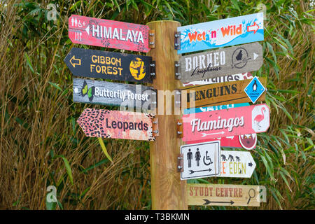 Signpost pointing out locations in Twycross Zoo. - Stock Image