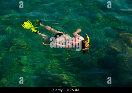 image of snorkler in clear water - Stock Image