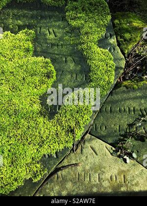 Moss covering an old grave stone. - Stock Image