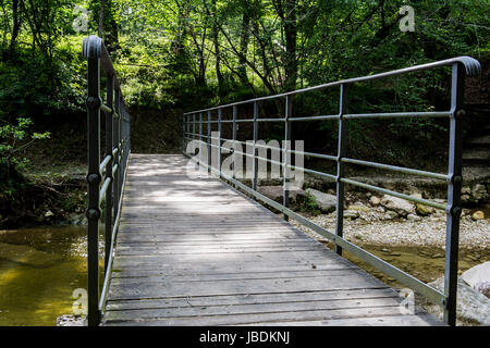Small wooden bridge in the middle of the forest - Stock Image