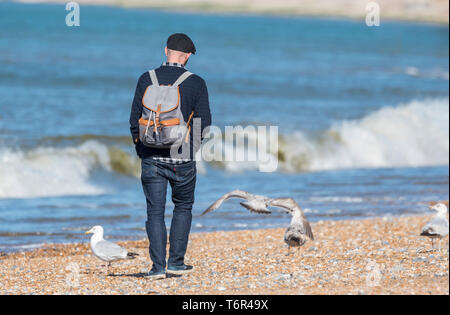 Man walking alone carrying a backpack on a beach in Spring in the UK. - Stock Image