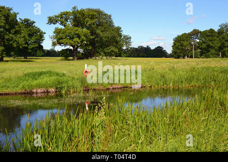 River running through the park at Hylands House and Gardens, Writtle, Chelmsford, Essex, UK - Stock Image