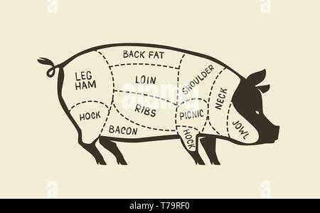 Cuts of pork, pig. Butcher shop, meat vector illustration - Stock Image
