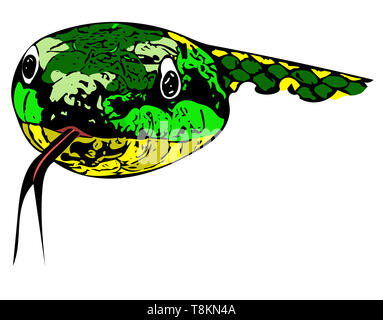 Computer drawn colour illustration of the head of a vibrant green snake head-on with outstretched tongue. - Stock Image
