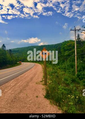Moose road sign warning on side of road in Cape Breton Island during summer - Stock Image