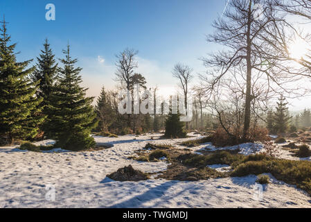 Tourist trail from Sokolec village to Wielka Sowa (Great Owl) mount in Landscape Park of Gory Sowie (Owl Mountains) in Central Sudetes, Poland - Stock Image