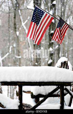 Country snow storm at rural Adirondak cabin with American flags - Stock Image