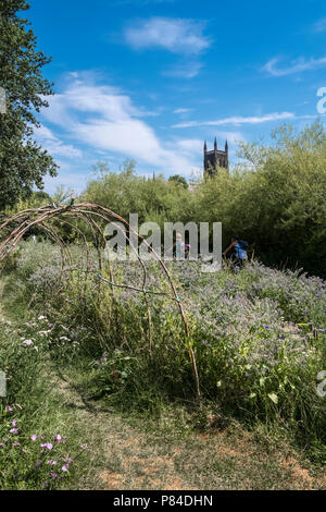 Wild flowers and willow arch on Bromwich Parade, a tranquil public walkway, with Worcester Cathedral in background, Worcestershire, West Midlands UK - Stock Image