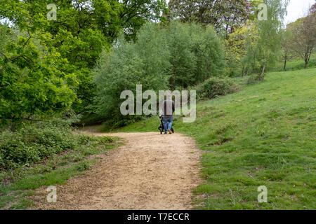 man pushing a pram in the Nymans House and gardens, West Sussex. Managed by the National Trust. - Stock Image