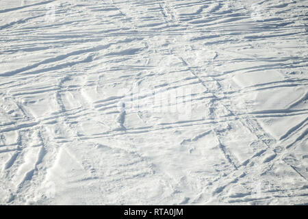Ski trails in fresh snow. Sunny day. Background with copy space for text. Wintertime - Stock Image
