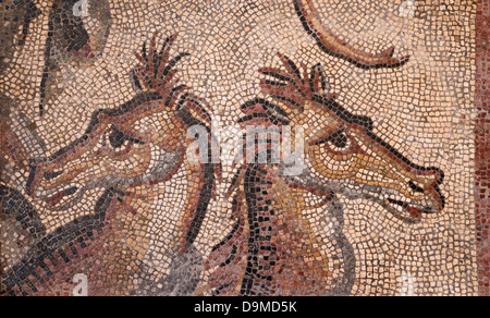 Roman mosaic fragment of two horses part of an original of the Triumph of Neptune in Museum Rolin Autun France - Stock Image