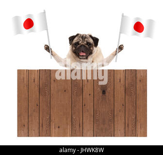 pug puppy dog with Japanese National flag and wooden fence, isolated on white background - Stock Image