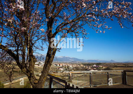 Elciego, Álava province, Basque Country, Spain : General view of  Elciego village in the  world-famous Rioja wine-production region. - Stock Image