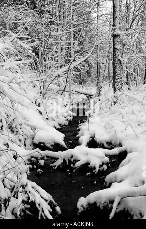 Snowy brook in Jericho, Vermont,USA. - Stock Image