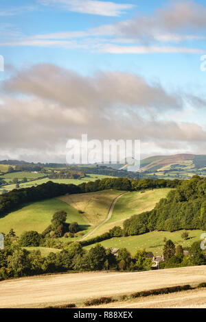 Countryside in the Welsh borders at Stapleton near Presteigne, Powys, UK. The conical hill is called The Whimble - Stock Image