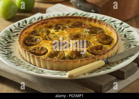 Greengage tart. Tarte aux prunes Reine Claude. Fruit dessert - Stock Image