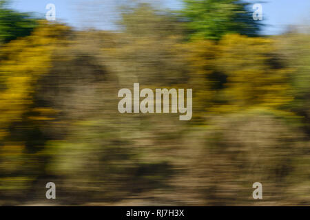 The view from a moving train window - Stock Image