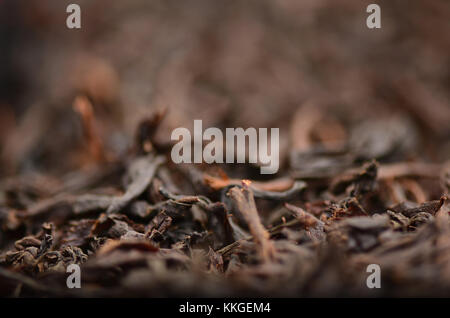 Loose dried tea leaves, close-up, narrow depth of field. - Stock Image