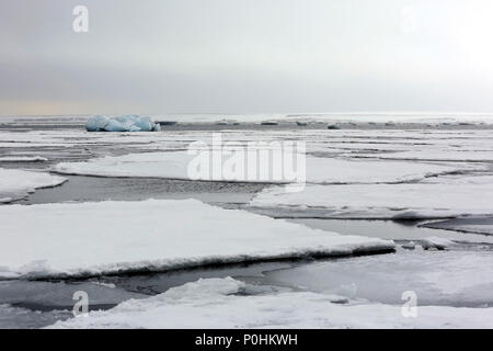 Ice-floes and Water, outside Spitsbergen. Svalbard, Norway - Stock Image