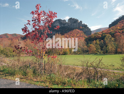 Seneca Rocks in Autumn - Stock Image