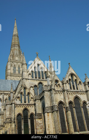 Salisbury Cathedral Wiltshire - Stock Image