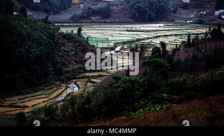 Irrigation is used to grow both cash and subsistence crops in indigenous communities around Sapa, Vietnam. - Stock Image
