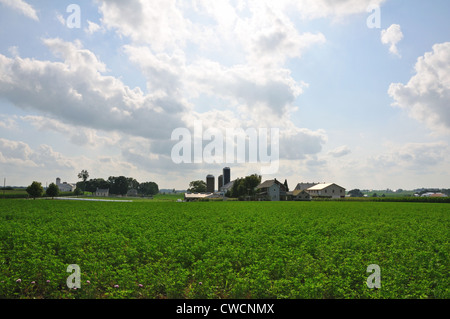 Amish farm, Lancaster County, Pennsylvania, USA - Stock Image
