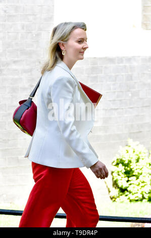 Liz Truss MP, Chief Secretary to the Treasury, leaving Downing Street after a cabinet meeting, May 2019 - Stock Image