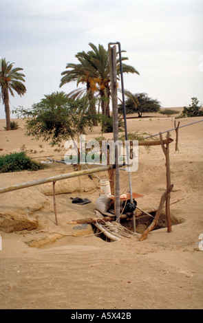 Water Pump at an Oasis in the Peruvian Desert - Stock Image