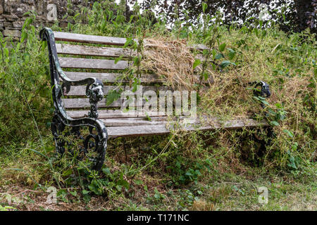 Old wooden bench overgrown with weeds and grasses in a country churchyard, UK - Stock Image