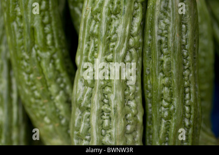 Ampalaya, or bitter melon, for sale in a market in Roxas, Oriental Mindoro, Philippines. - Stock Image